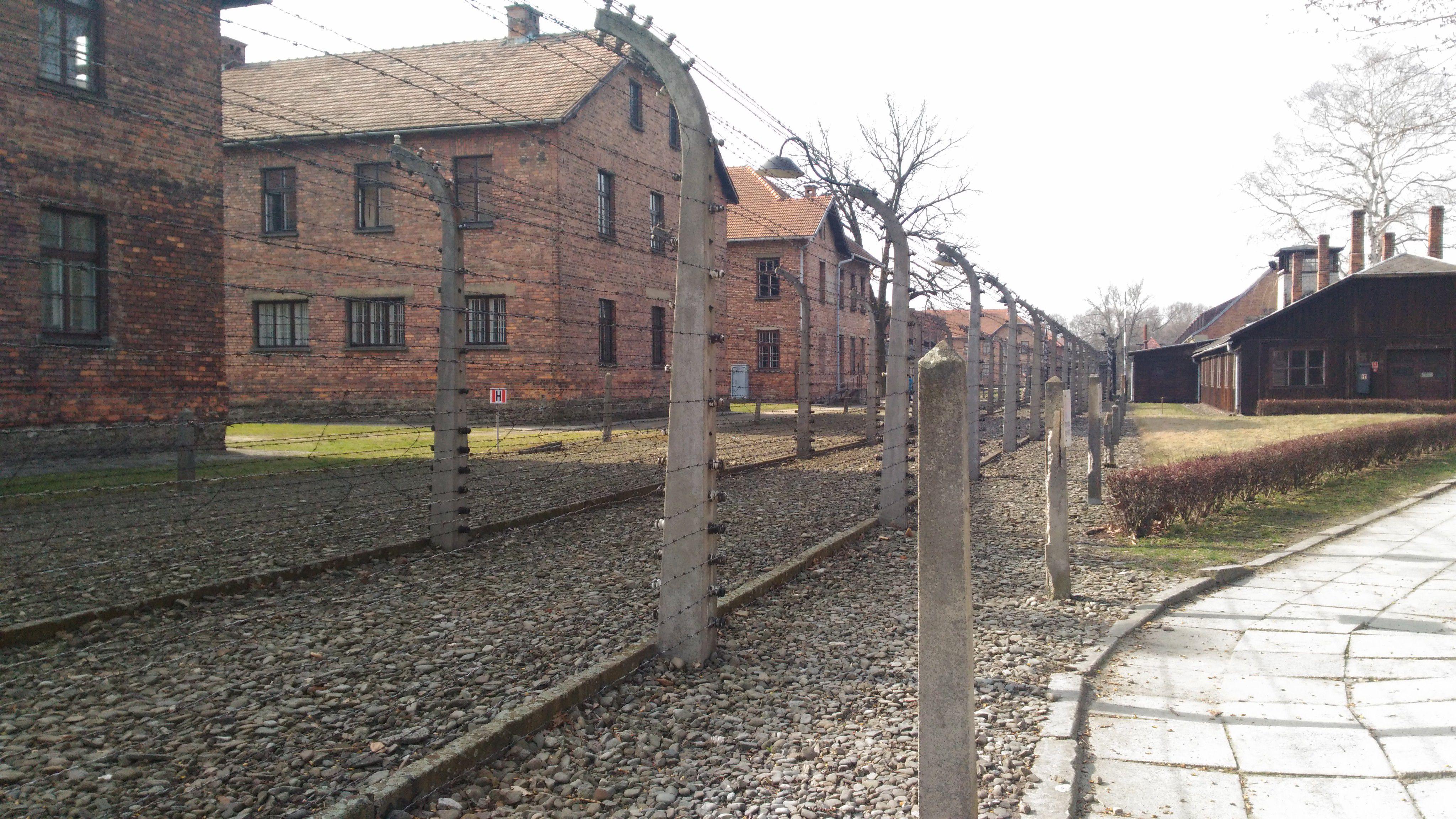 Auschwitz'in içine doğru bir bakış